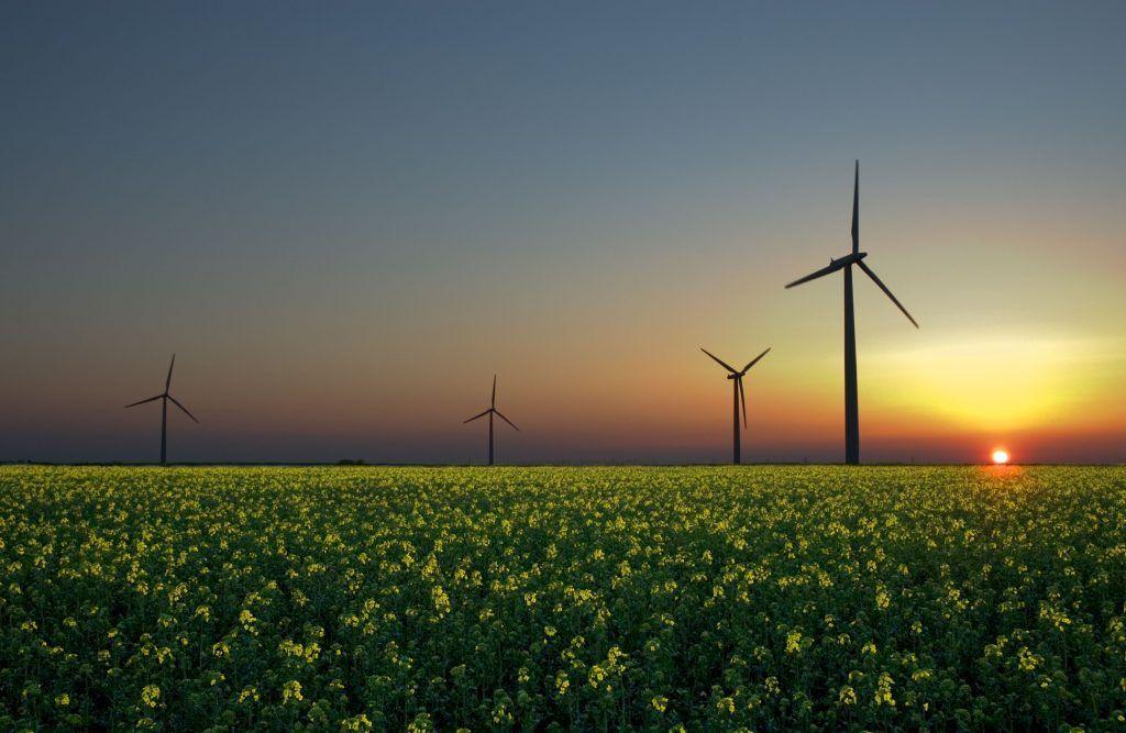 Частные владельцы небольших источников зеленой энергетики освобождены от НДФЛ